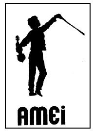 Logo AMEI